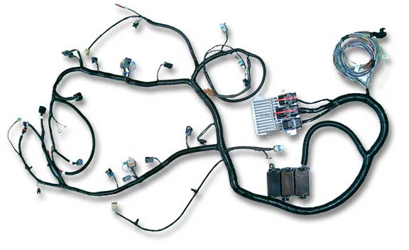 custom 4u stand alone ls2 ls7 gm engine wiring harness custom 4u stand alone ls2 ls7 gm engine wiring harness